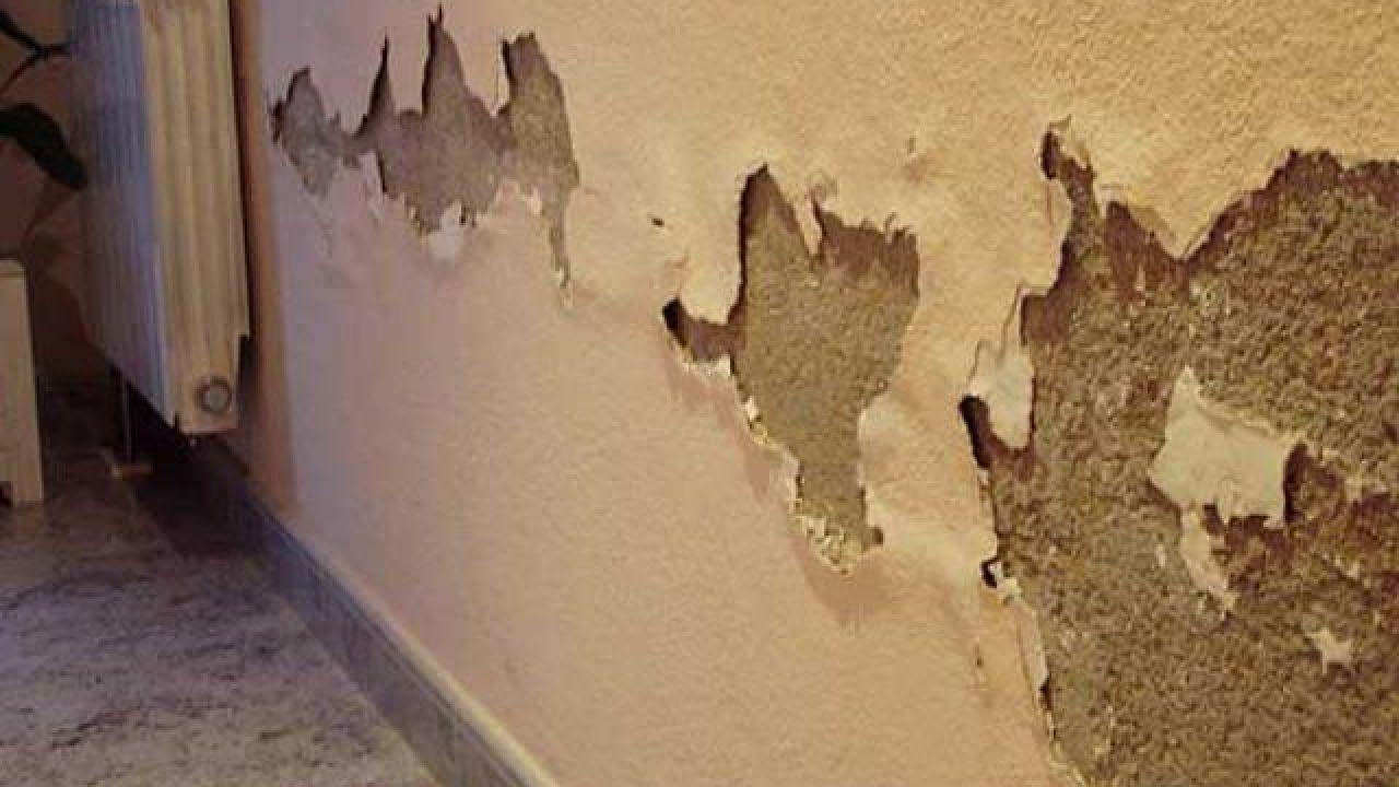كيف تعالج رطوبة الجدران
