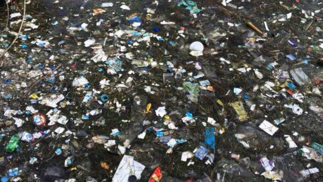 معلومات عن تلوث البيئة