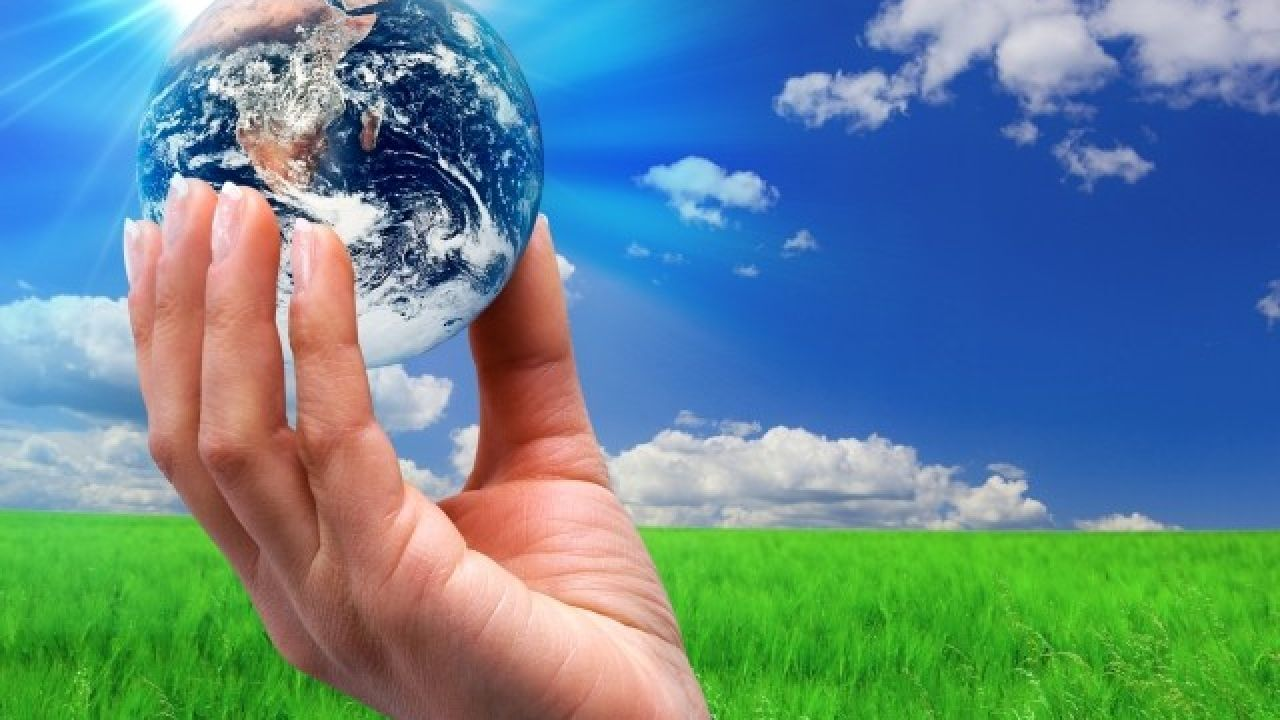 مفهوم البيئة