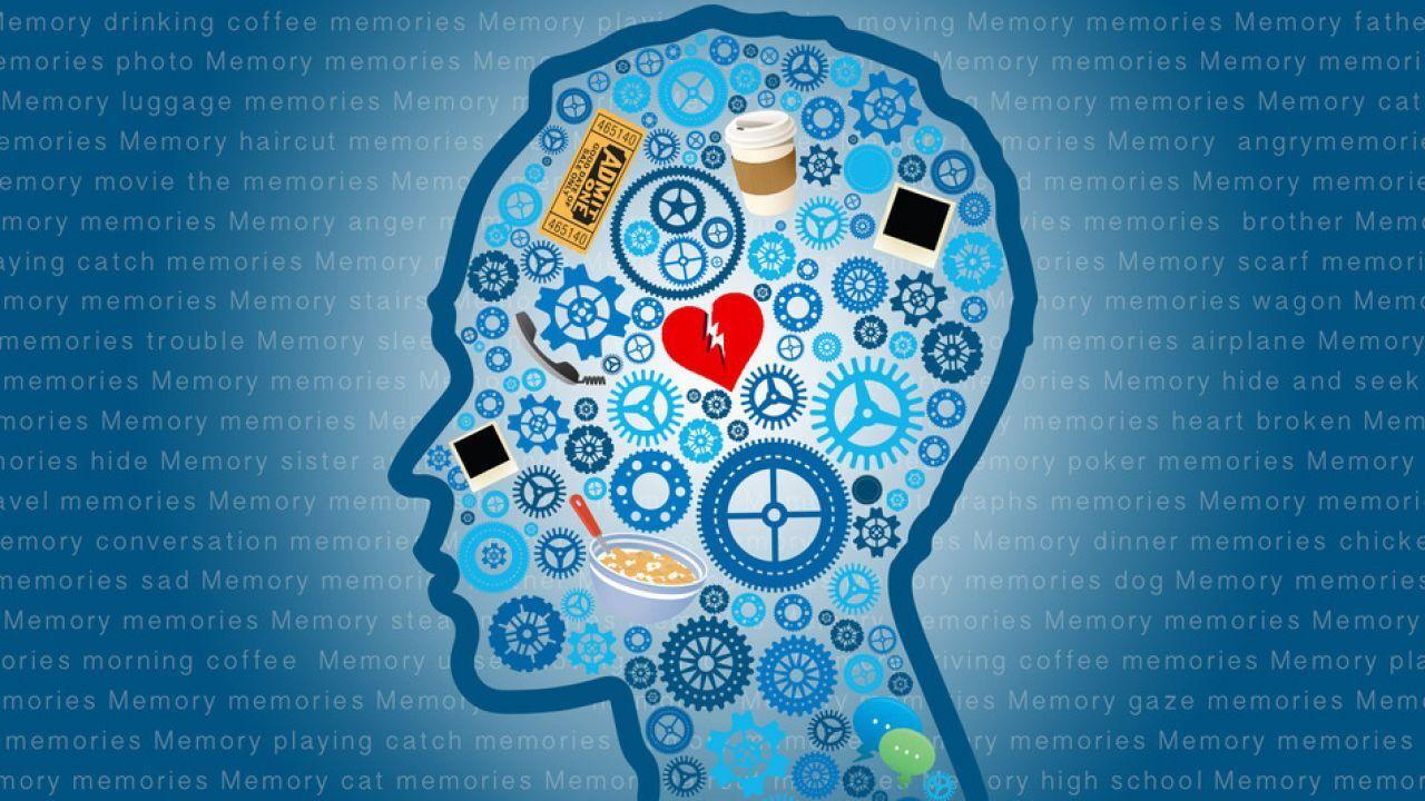 تعريف علم النفس المعرفي