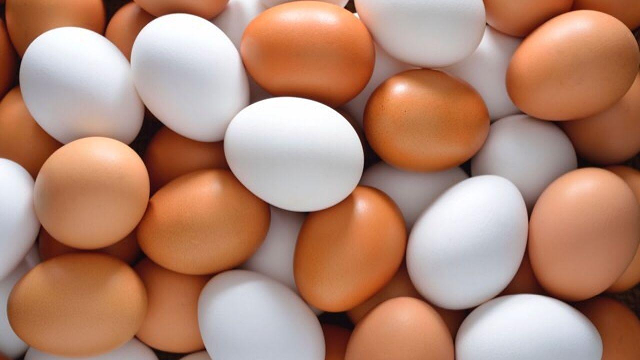 فوائد البيض المسلوق للشعر