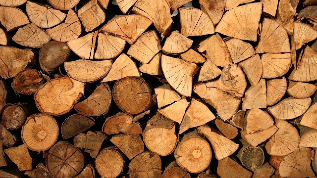 فوائد خشب السدر