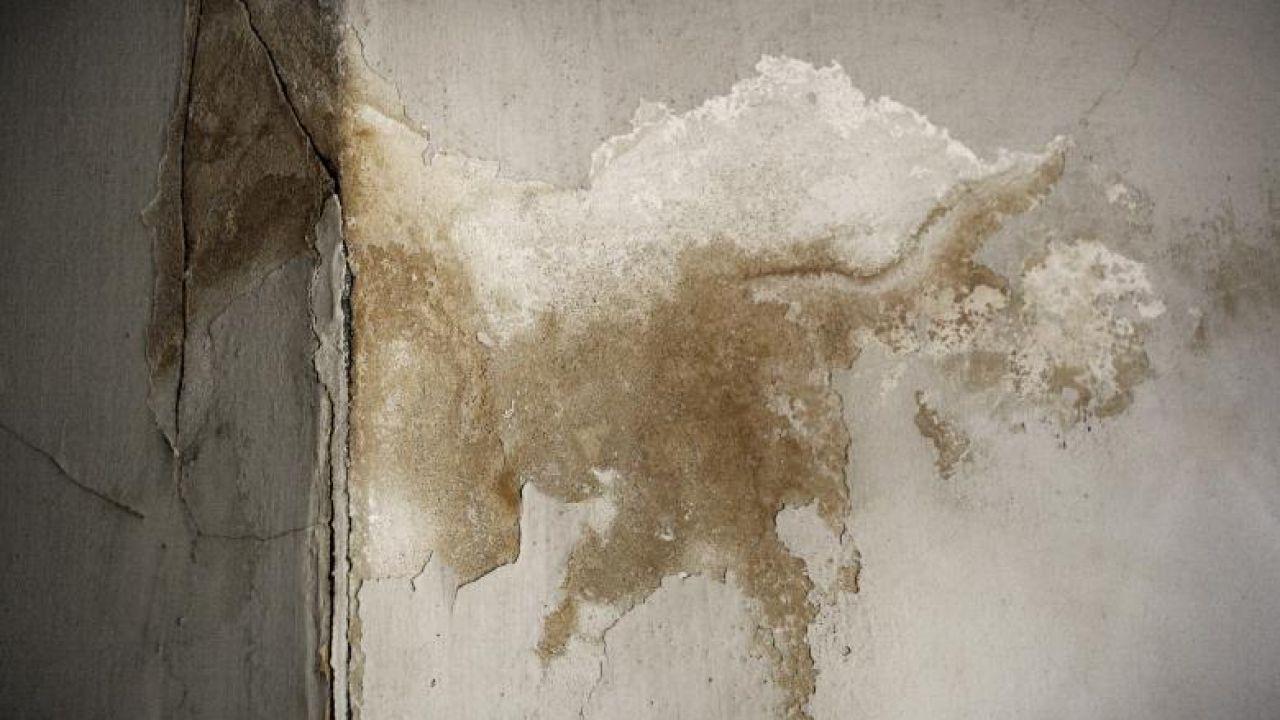 التخلص من رطوبة الجدران
