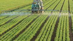 تعريف الزراعة
