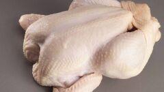 السموم الموجودة في الدجاج