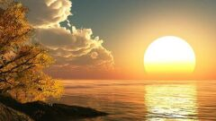 هل الشمس تدور
