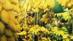 ما هي فوائد الموز