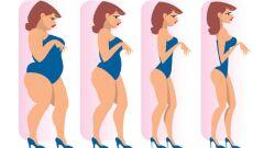 إنقاص الوزن بدون رجيم