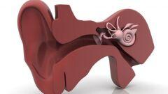 علاج ثقب طبلة الأذن