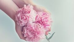 قوة الحب والتسامح