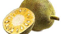 فوائد فاكهة الجاك فروت