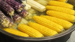 فوائد الذرة المسلوقة لإنقاص الوزن