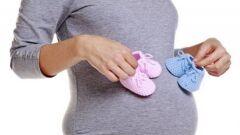 بداية ظهور بطن الحامل