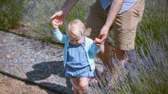 كيفية تدريب الطفل على المشي